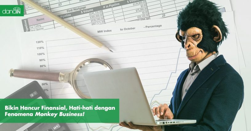 Danain-fenomena_monkey_business-gambar orang main laptop